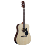 Alvarez RD27 Dreadnaught w/bag