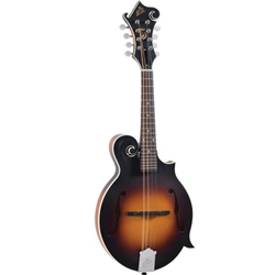 Mandolin The Loar Grassroots Elect F-Style